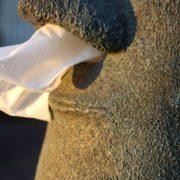 Dispensador de pañuelos Moai Isla de Pascua